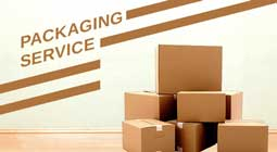 کرونا packaging255px